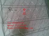 試供品販売のための六角形ワイヤー網を使って、六角形の金網