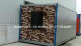 Grote Nieuwe Verkoop - Type die het Mobiele Geprefabriceerde/PrefabHuis van de Container voor Pakhuis vouwen