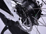 2017 500W Samsungの電気脂肪質のバイク