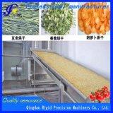 Asciugatrice per l'essiccatore disidratato della zucca delle verdure