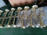 Tonalité de trompette de gros /c /Laque d'Or / pistons en acier inoxydable