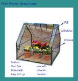 집을 설치하는 소형 온실 정원