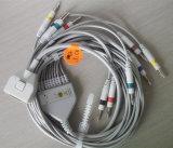 Câble de Fukuda 10 DIN3.0&Banana4.0 EKG&ECG