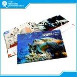 卸し売りカタログの小冊子マガジンパンフレットの印刷