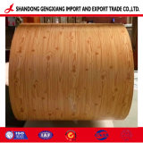 Bobina d'acciaio stampata grano di legno della fabbrica PPGI/PPGL