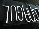 Letras da cola Epoxy da resina de Trimless Facelit