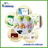 Soem-ergänzt Probiotic Mischungen Nutraceuticals Nahrung das 15 Belastungs-Quetschkissen