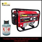 Sale를 위한 공장 Price 중국 2.5kw LPG Generator Sets