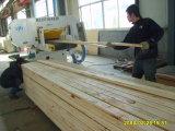 China fábrica de madera maciza de finger joint Board