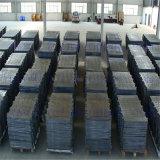 La plaque d'anode de plomb pour le Zinc électro-extraction/Électroraffinage/électrolyse