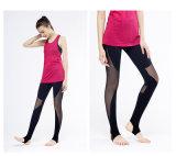 Sportwear Legging halète des collants de yoga