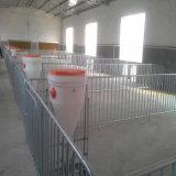 Cerco de aço da galvanização do MERGULHO quente para a criação de animais do porco