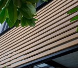 Platsicの現代木製の合成の装飾的な木ずり