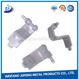 Carbon Steel/Stainless Steel Small Stamping Shares with Plating Zinc