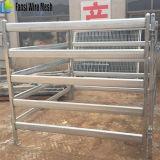 牛のための熱い浸された電流を通された家畜のヤードのパネル