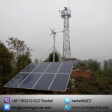400W Wind Solar Hybrid System Utilise un petit générateur de turbine éolienne