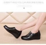 De Dansende Schoenen van de Dames van de manier