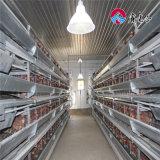 Gabbia di batteria del pollo di strato di prezzo di mercato del pollame da vendere