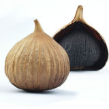 酸っぱく、甘い好みによって発酵させる黒いニンニク食糧のための6つのCmの球根