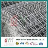 Сваренная ячеистая сеть ячеистой сети гальванизированная панелью сваренная конструкцией