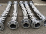 Umsponnene flexibles Metalschlauch-Baugruppe des Edelstahl-Ss304