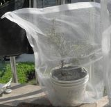 Анти- плетение насекомого изготовляет поставку для мешков плетения мухы Сад-Плодоовощ
