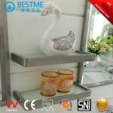 Шкаф ванной комнаты хорошего качества нержавеющей стали (BY-B6038)