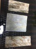 Hölzernes Entwurf Belüftung-Deckenverkleidung Belüftung-Wand-Plastikpanel Cielo Raso De PVC