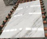 Сляб Китая Carrara белый Castro белый мраморный для плиток стены (YY-VOW)
