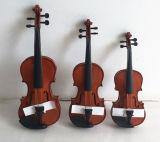 Твердая скрипка музыкальных аппаратур скрипки студента в случае скрипки