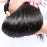 Quercy 100% virgem por grosso de cabelo humano Extensão, Cutícula Completo Remy Hair tecem