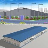 鋼鉄構造構築の建築材料(BV、SGS)