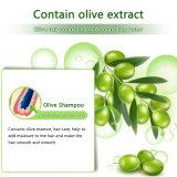 OEM / ODM d'olive sous étiquette privée Shampooing cheveux