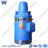 深い井戸ポンプ(WP-1)のためのVhs (b)シリーズ縦空シャフトの非同期モーター