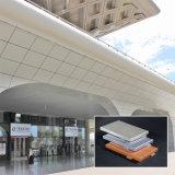 Parete divisoria di alluminio personalizzata del soffitto di Matal di formato per il centro commerciale