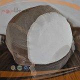 Parrucca medica superiore di seta dei capelli umani (PPG-l-01562)