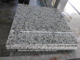 Плитки пола строительного материала камня гранита Fujian дешевые Bala белые