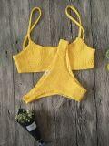 Новый костюм ванны конструкции вычисляет по маштабу Swimwear Бикини заломов двухкусочный