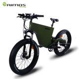 大人のための熱い販売連動させられたモーター48V 1000W電気バイク