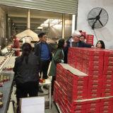 Las ventas del condimento y del condimento de la goma de tomate de la marca de fábrica de Ginny manan