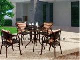 Piscina /Rota / Jardín/patio Muebles de Rattan Silla Hotel/& Tabla (SA 2098 &6098HS DT)