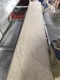 防水PVC壁パネルの印刷PVC天井および壁パネル