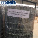 Rete metallica saldata rinforzo dalla Cina