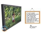 VGA DVI (MW-222MBH)が付いている高い明るさ22のインチTFT HDMIの表示