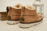 Мода Леди короткие зимние ботинки с Shoelace клина