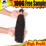 最も普及したねじれた巻き毛のスラブの毛のブラジルのバージンの分割されたEnderの毛
