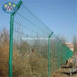 Suministrar todas las clases de materiales de cercado de la protección de la seguridad el precio bajo de la fábrica