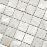 Mosaico blanco del shell del agua dulce