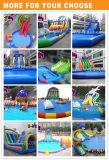 Скольжение воды игрушки воды парка воды гигантского дракона раздувное подвижное для малышей и взрослых