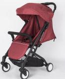 Baby-Spaziergänger besitzen fabrikmäßig hergestelltes innen